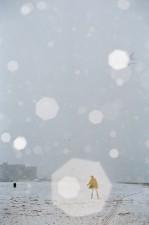 http://allenying.com/files/gimgs/th-65_WinterBeachSurfFrisbeeSnow020.jpg